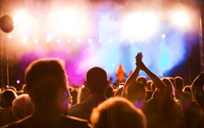 earpeace ear plugs for music concert