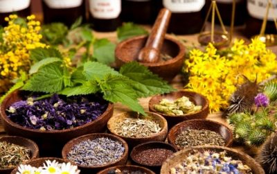 herbs to improve hearing